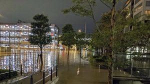 Typhoon Hagibus Death Toll In Japan Climbs: 19 Dead, 16 Missing